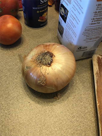 The First Onion